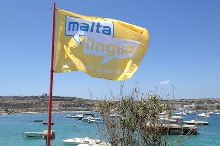 Drapeau de l'école Maltalingua