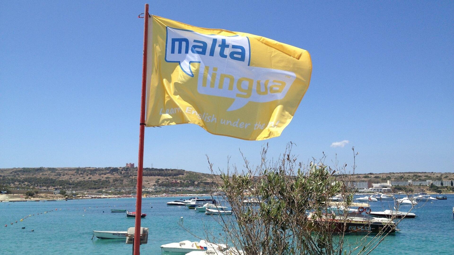 Drapeau de l'école d'anglais Maltalingua